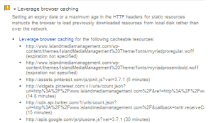 Clicking on the Leverage Browser caching shows me the list of problems I have with the web page for that topic